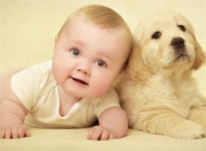 属狗的哪个时辰出生最好