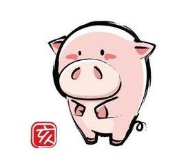 2019屬豬的寶寶幾月出生最好
