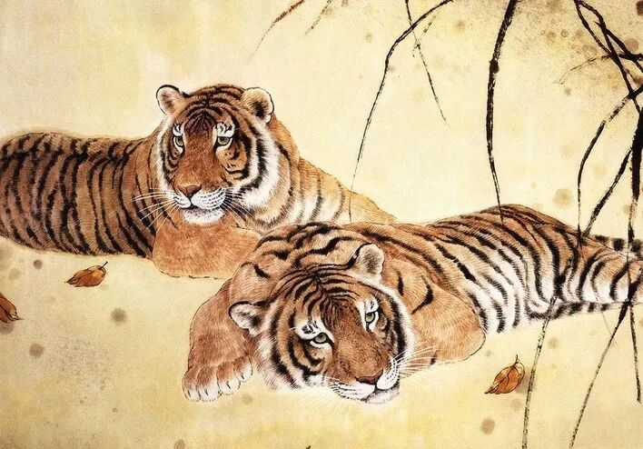 1962年屬虎的人婚姻配對詳解