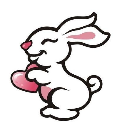 2019年屬兔人的全年運勢