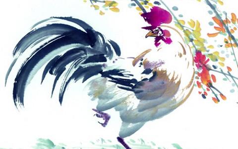 屬雞人一生命運與姻緣